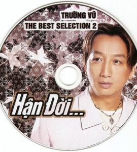 Trường Vũ – The best selection 2 – Hận đời