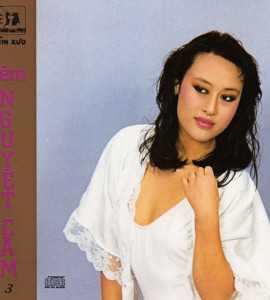 Đêm Nguyệt Cầm- Hòa tấu Duy Cường (DXCD005)